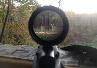 Best Scope For Deer Hunting